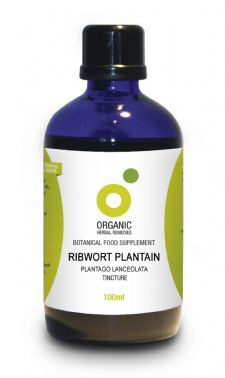 Organic Ribwort Plantain Tincture 100ml